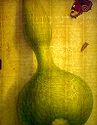 Plant And Insect Study: Bottle Gourd; Io Butterfly