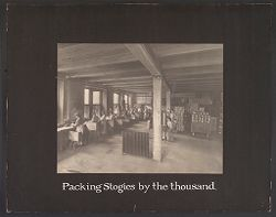 Industrial Problems, Conditions: United States. Pennsylvania. Pittsburgh. Pittsburgh Survey: Packing Stogies by the thousand..   Social Museum Collection