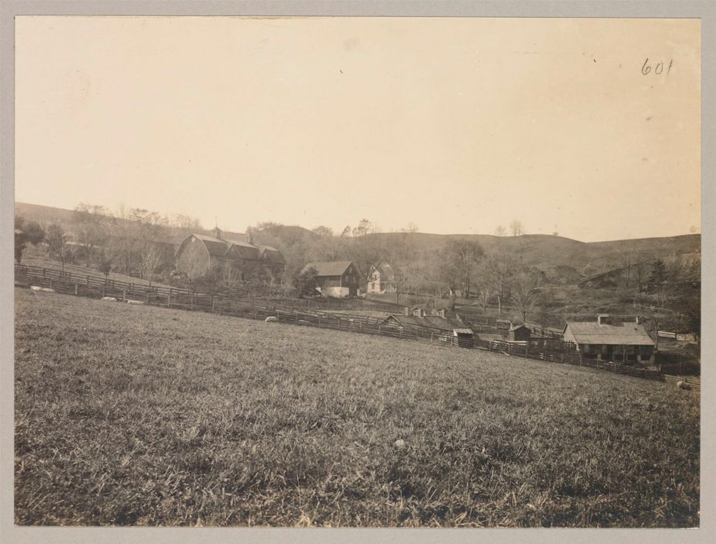 Charity, Soldiers And Sailors: United States. New York. Bath. State Soldiers' And Sailors' Home: State Soldiers' And Sailors' Home, Bath, N.y.: The Farm
