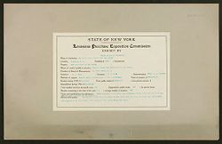 Defectives, Blind: United States. New York. Batavia. State School for the Blind: Louisiana Purchase Exposition Commission.   Social Museum Collection