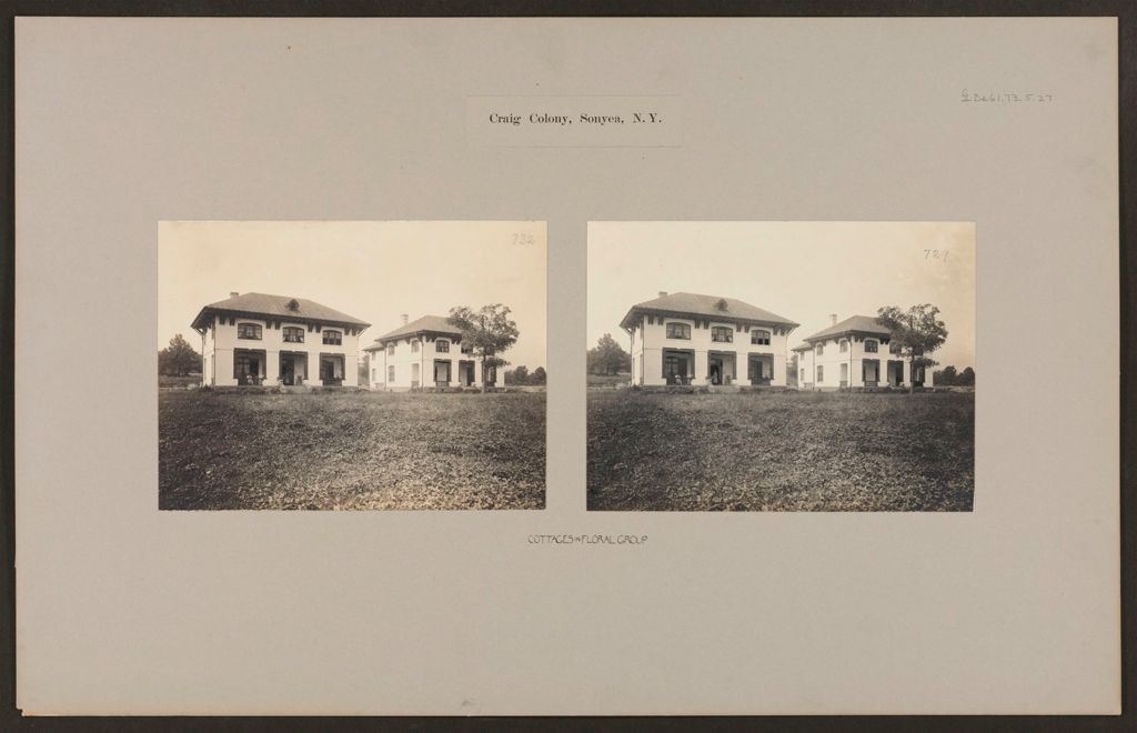 Defectives, Epileptics: United States. New York. Sonyea. Craig Colony: Craig Colony, Sonyea, N.y.: Cottages In Floral Group