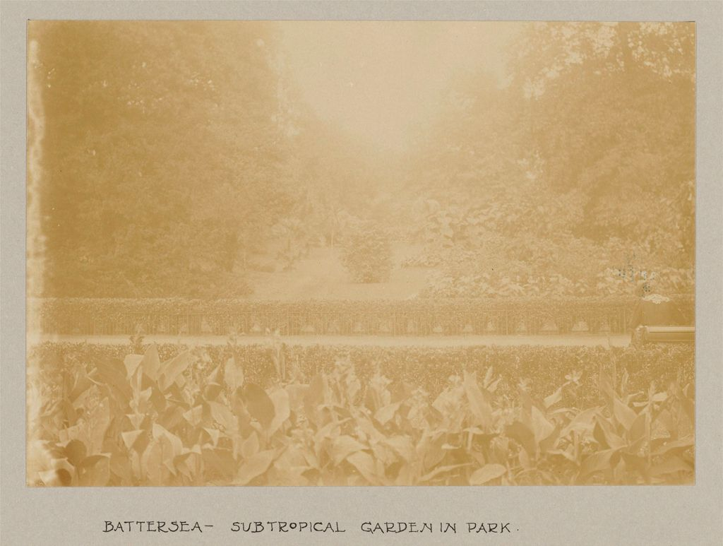 Recreation, Parks And Playgrounds: Great Britain, England. London. Playgrounds And Parks: Social Conditions In London, England, 1903: Battersea - Subtropical Garden In Park.