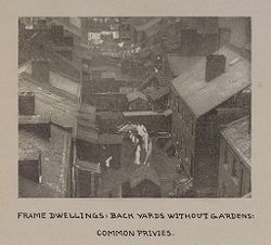 Housing, Conditions: United States. Pennsylvannia. Pittsburgh. Houses; Streets; Yards: Housing Conditions, Pittsburgh. Pa.:  Frame dwellings: back yards without gardens: common privies..   Social Museum Collection