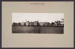 Housing, Improved: United States. Massachusetts. Boston. Boston Dwelling House Company: Boston Dwelling House Company..   Social Museum Collection