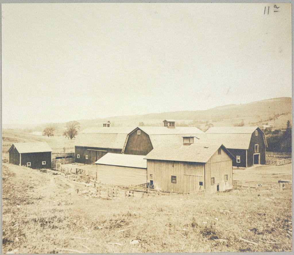 Charity, Public: United States. New York. Angelica. Allegany County Almshouse: Almshouses Of Allegany County, N.y.: Barns.