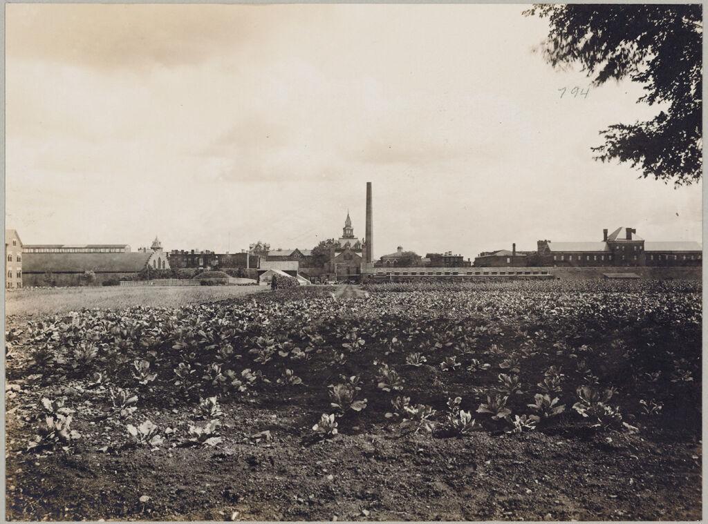 Crime, Children, Reform Schools: United States. New York. Rochester. State Industrial School: State Industrial School, Rochester, N.y.: Farm-Panorama
