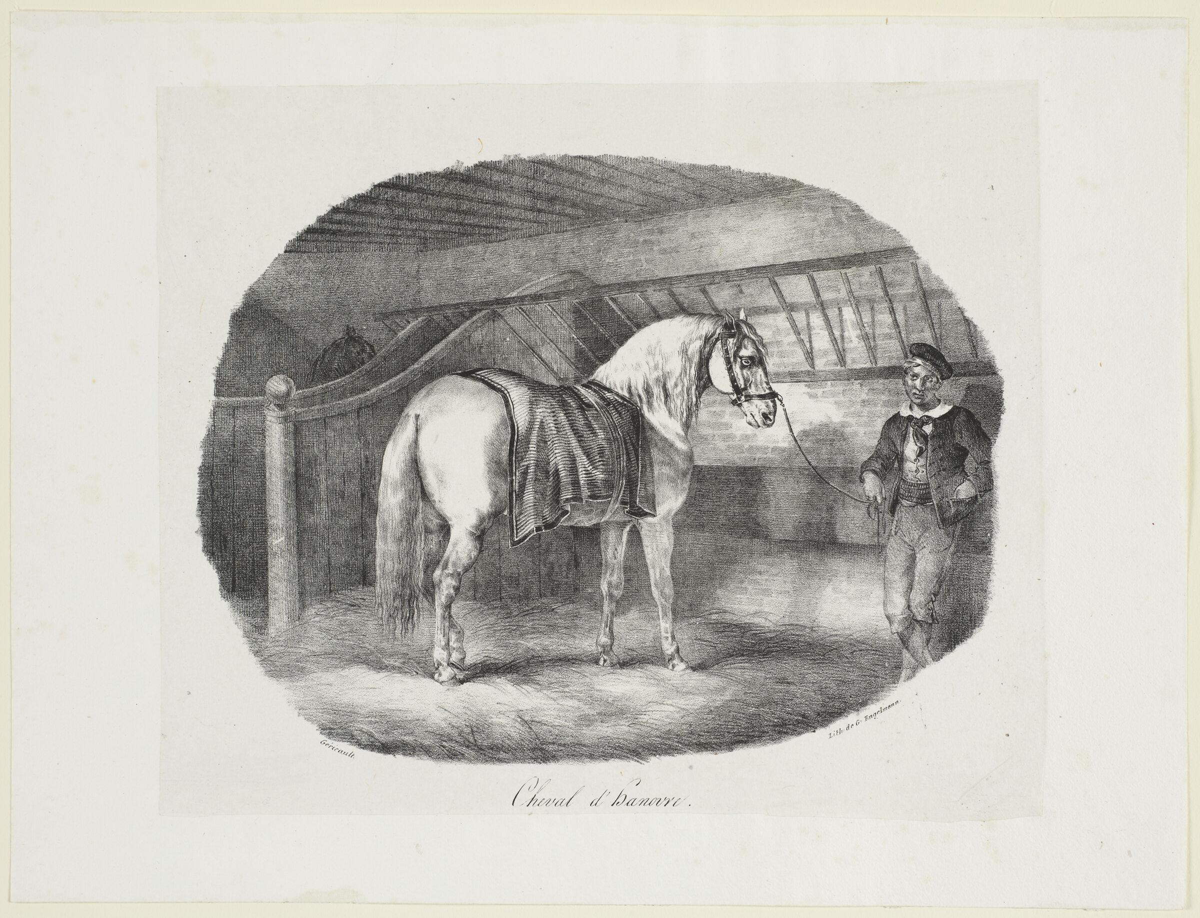A Hanoverian Horse