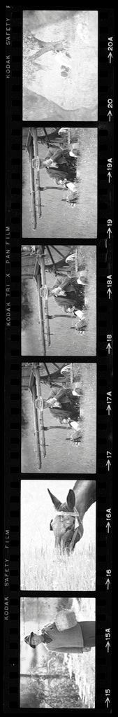 Untitled (Man With Basket; Horse; Man Sitting In Field, Nazaré, Portugal)