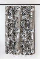 Plastic Curtain