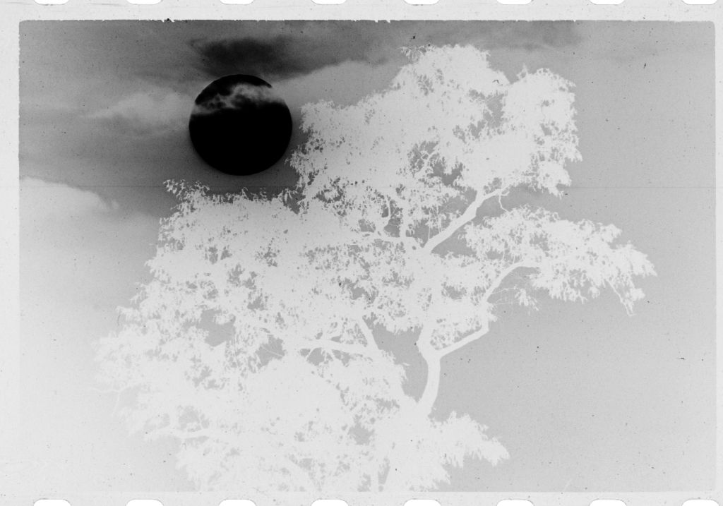Untitled (Sun Surrounded By Clouds Above Treetop, Vietnam)
