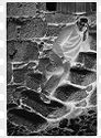 Untitled (Man Leaning On Stone Steps, Nazaré, Portugal)