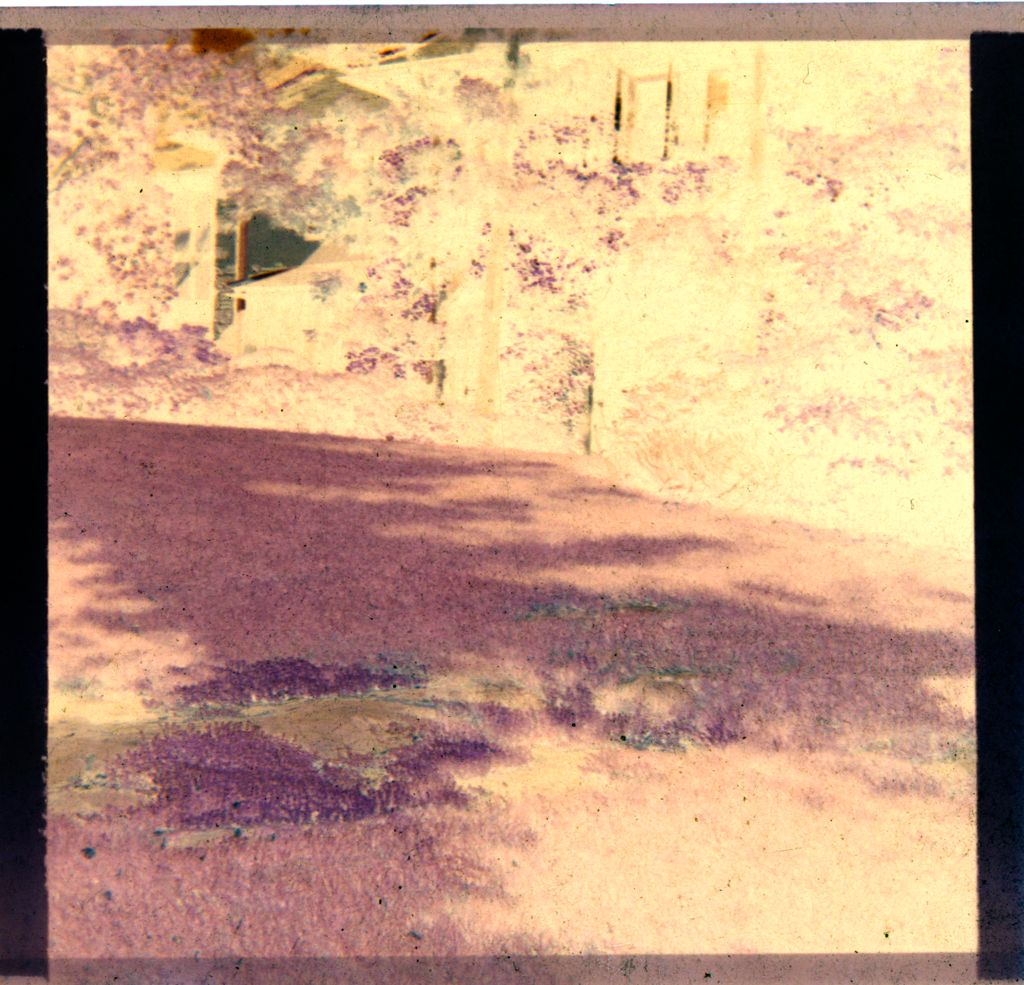 Untitled (Back Of House And Part Of Yard)