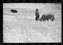 Untitled (Woman With Two Cows In Grassy Field And Overturned Umbrella In Background, Nazaré, Portugal)