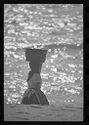 Untitled (Woman Carrying Basket On Her Head Kneeling On Beach, Nazaré, Portugal)