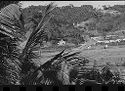 Untitled (Village In Valley And Hills With Palm Trees, Vietnam(?))