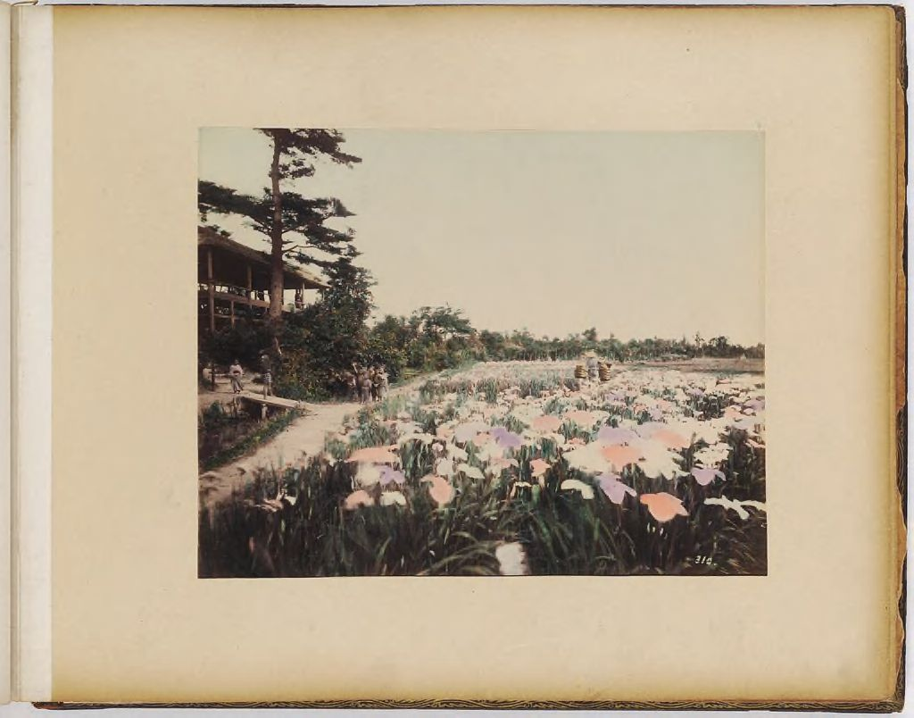 Untitled (Garden With Children And Building To Left)