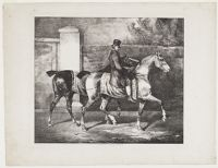 A Groom Exercising Two Horses