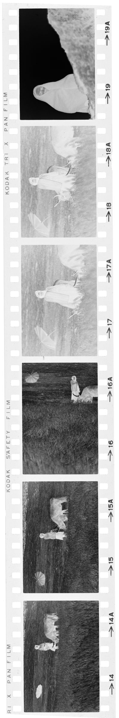 Untitled (Woman With Cows In Grassy Field; Woman By Wall, Nazaré, Portugal)