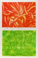 Spaghetti And Grass