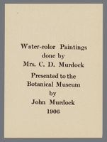 Exhibit label: Water-color Paintings done by Mrs. C.D. Murdock [sic]. Presented to the Botanical Museum by John Murdock [sic], 1906
