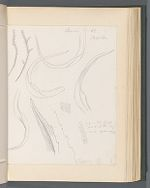 Zygodon [Leptodontium viticuloides v. panemense (Lor.) Zander [Neckera viticuloides P.B.]]