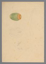 Pencil and color sketch of fruit with sketch of flower on back, before 1817