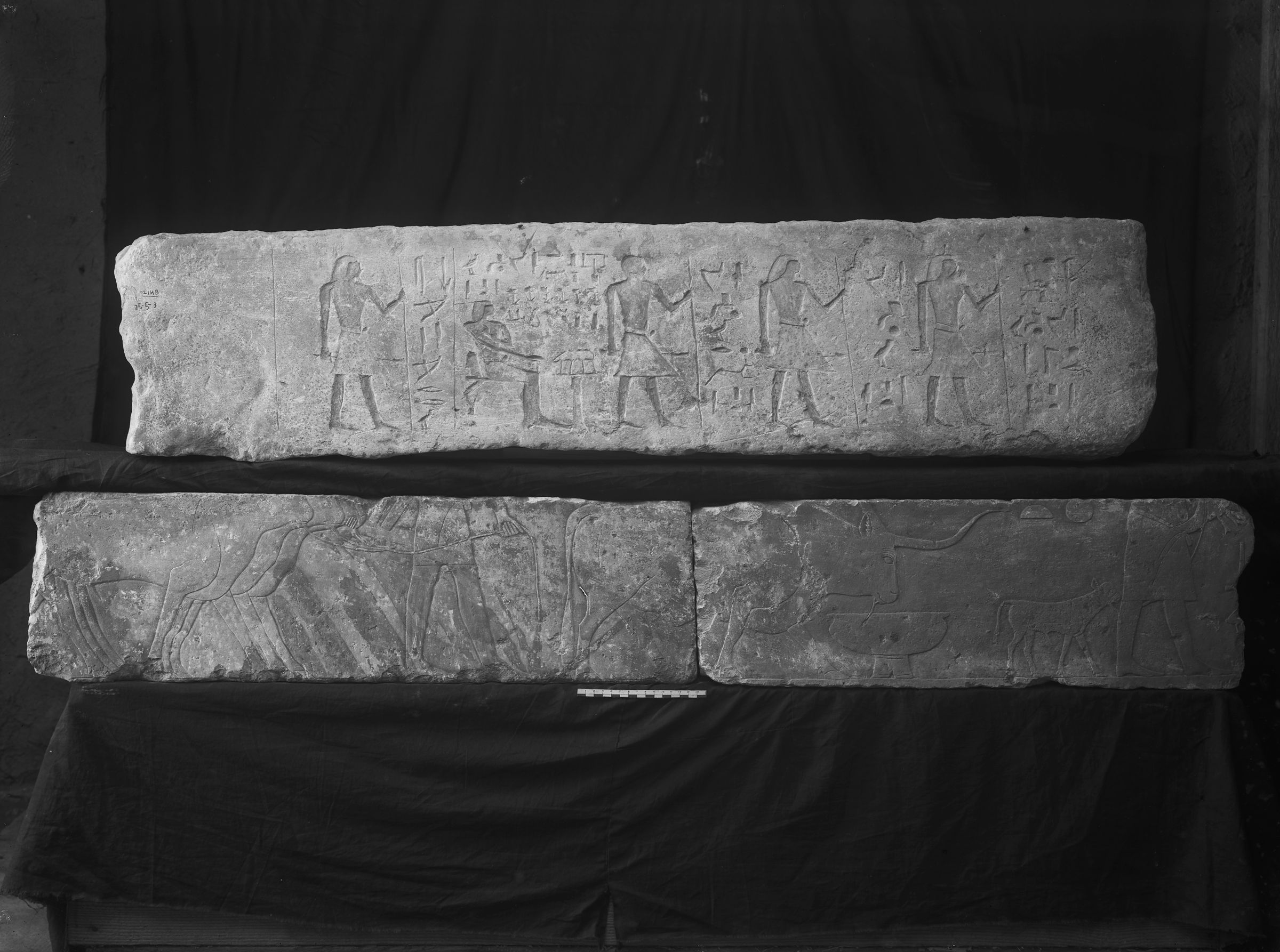 Object(s) photograph: Site: Giza; view: G 7214, G 7101