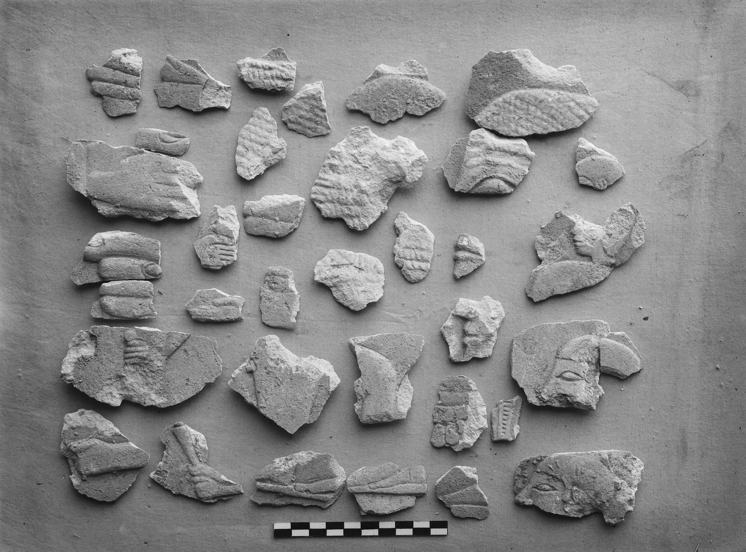 Object(s) photograph: Site: Giza; view: G 1607