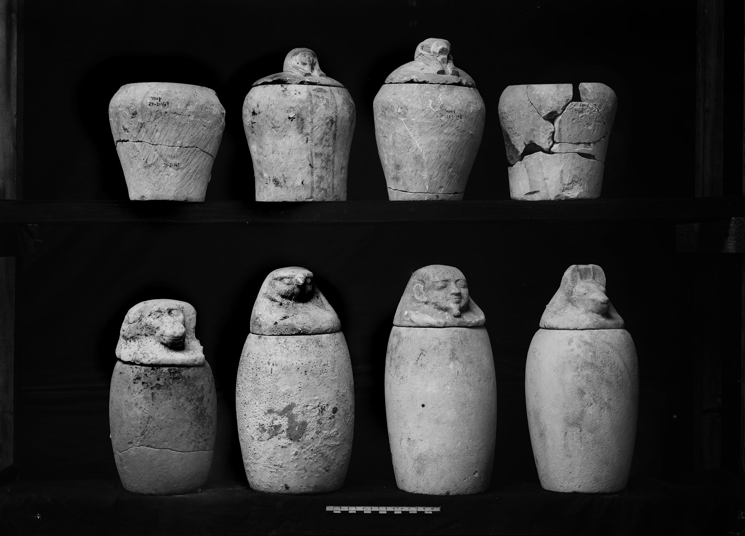 Object(s) photograph: Site: Giza; view: G 7510, G 7632