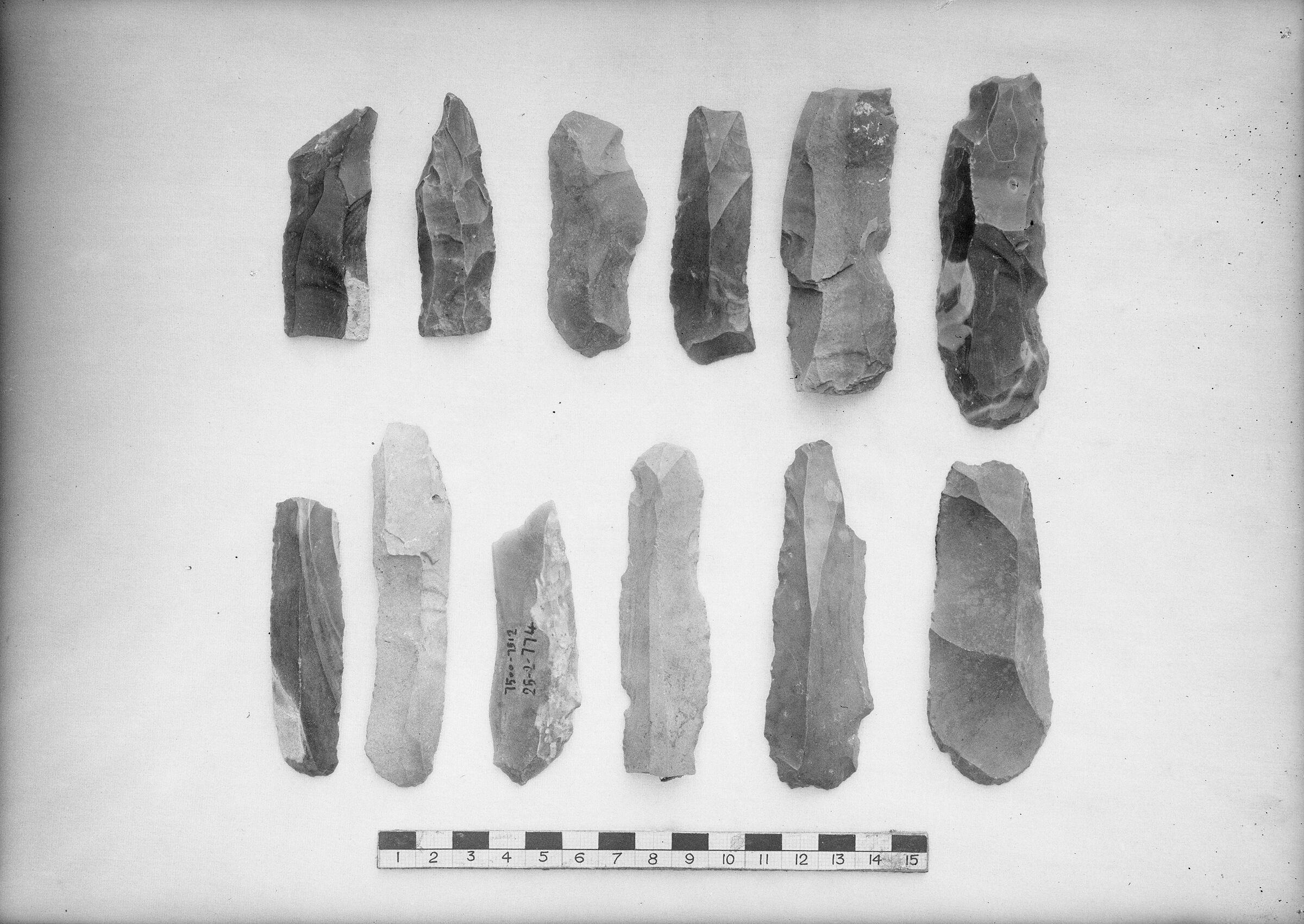 Object(s) photograph: Site: Giza; view: street G 7000, G 7215, street G 7500, street G 7100, avenue G 1