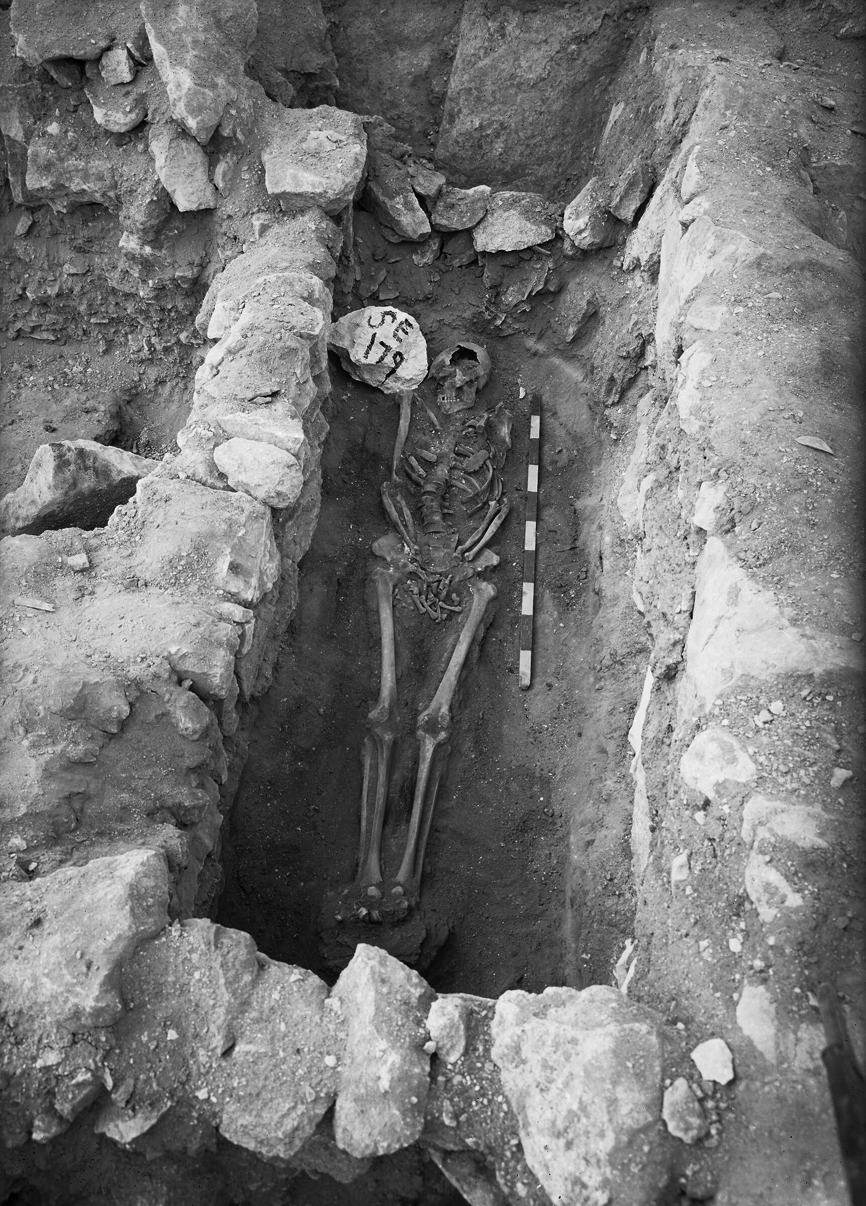 Western Cemetery: Site: Giza; View: G 7000 SE 179