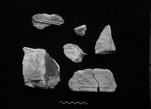 Object(s) photograph: Site: Giza; view: G 7650, G 7050