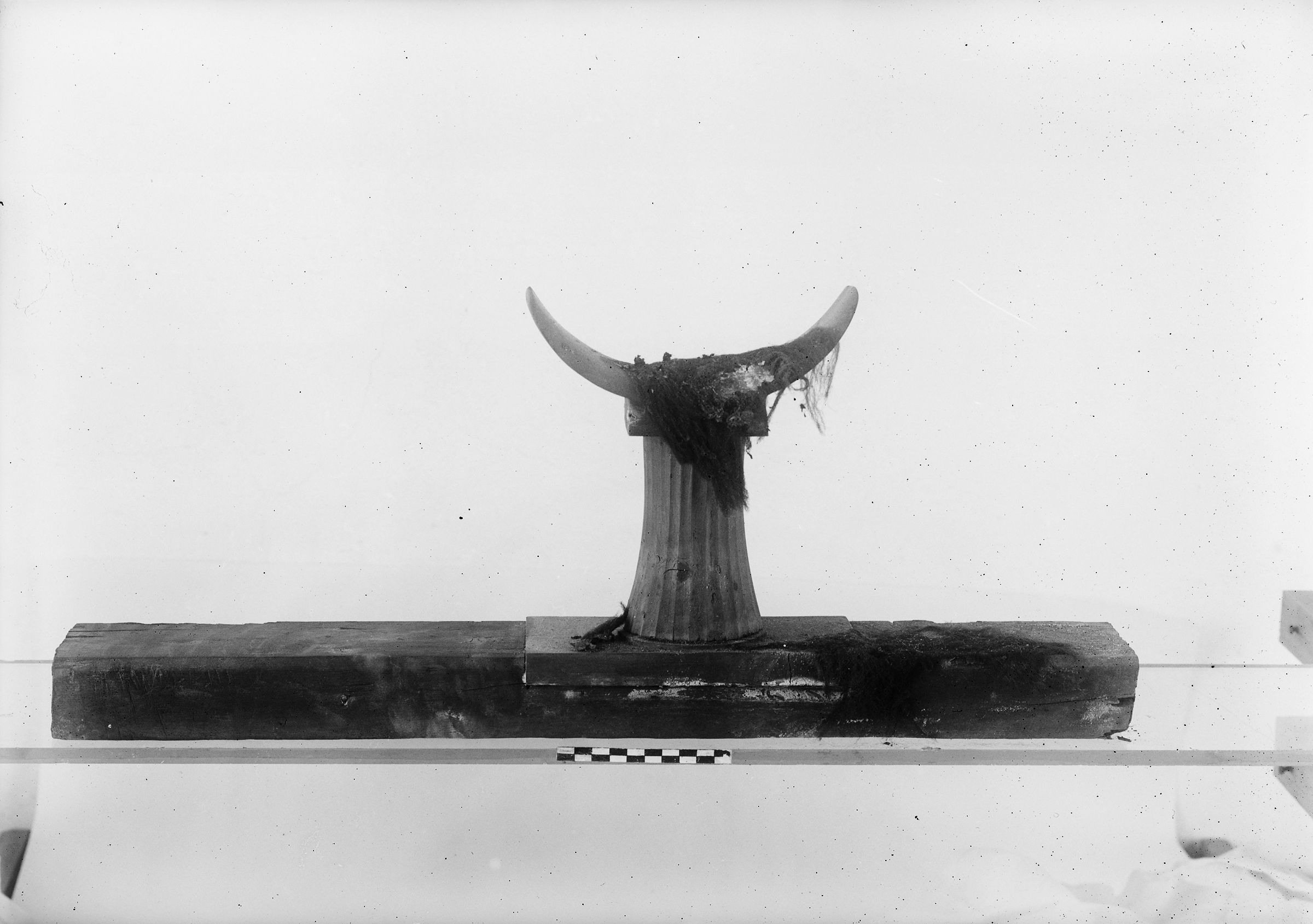 Object(s) photograph: Site: Giza; view: G 1451