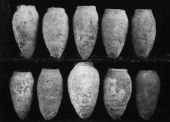 Object(s) photograph: Site: Giza; view: G 1152, G 1160, G 1362, G 5040, G 1209, G 5032, G 1401