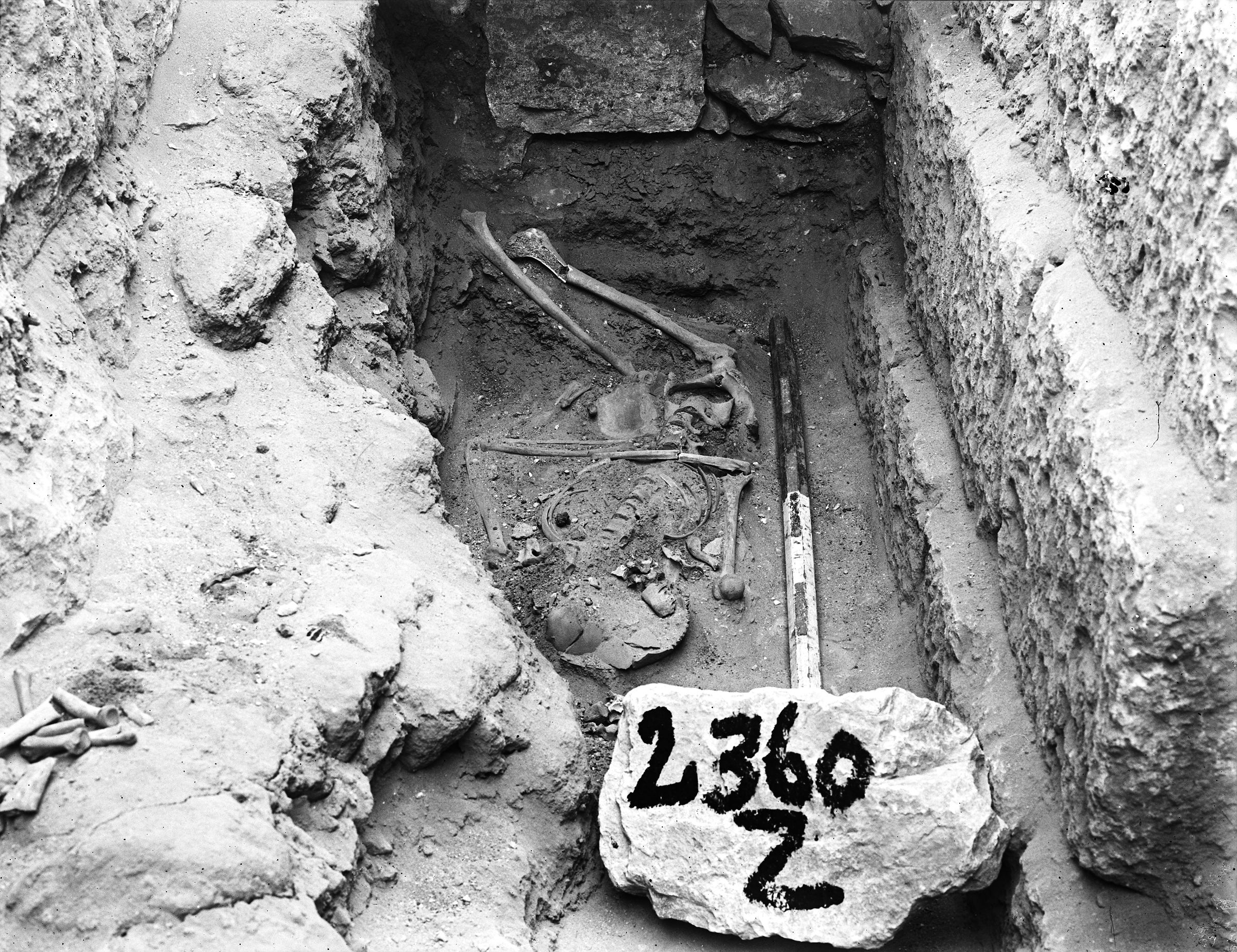 Western Cemetery: Site: Giza; View: G 2360, G 2353