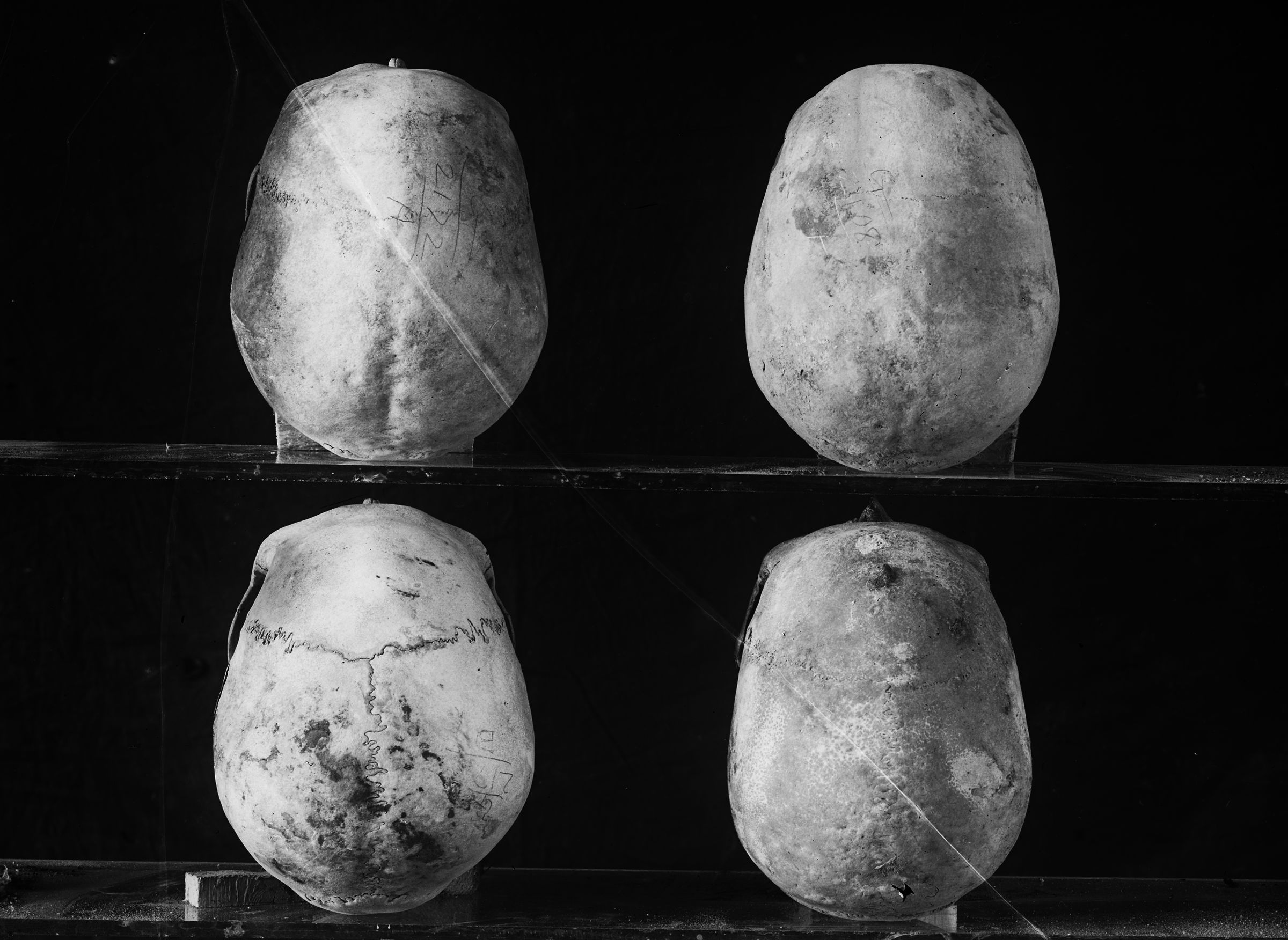 Object(s) photograph: Site: Giza; view: G 2172, G 2408, G 2175, G 2337