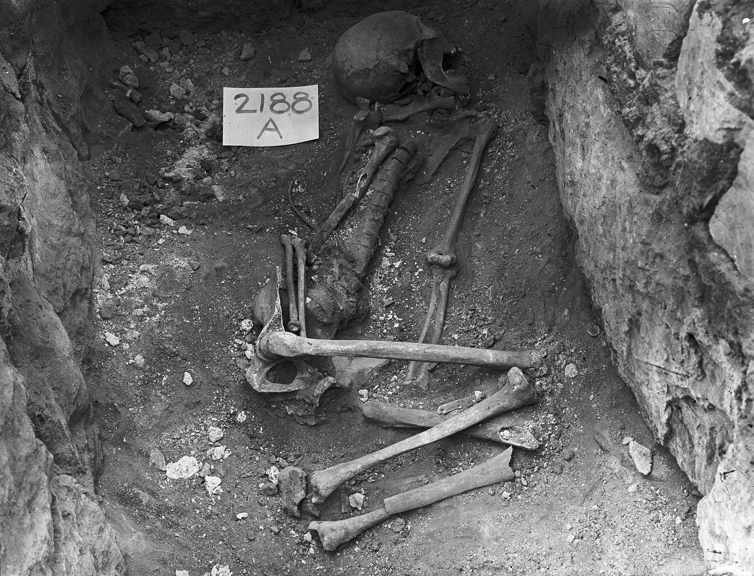 Western Cemetery: Site: Giza; View: G 2188