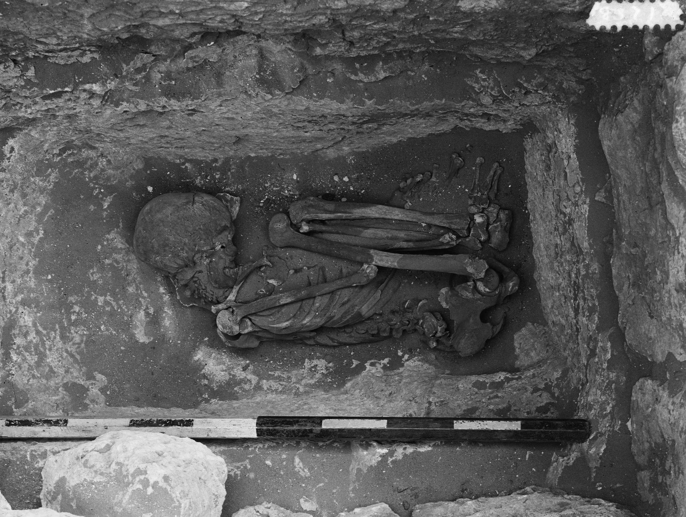 Western Cemetery: Site: Giza; View: G 21