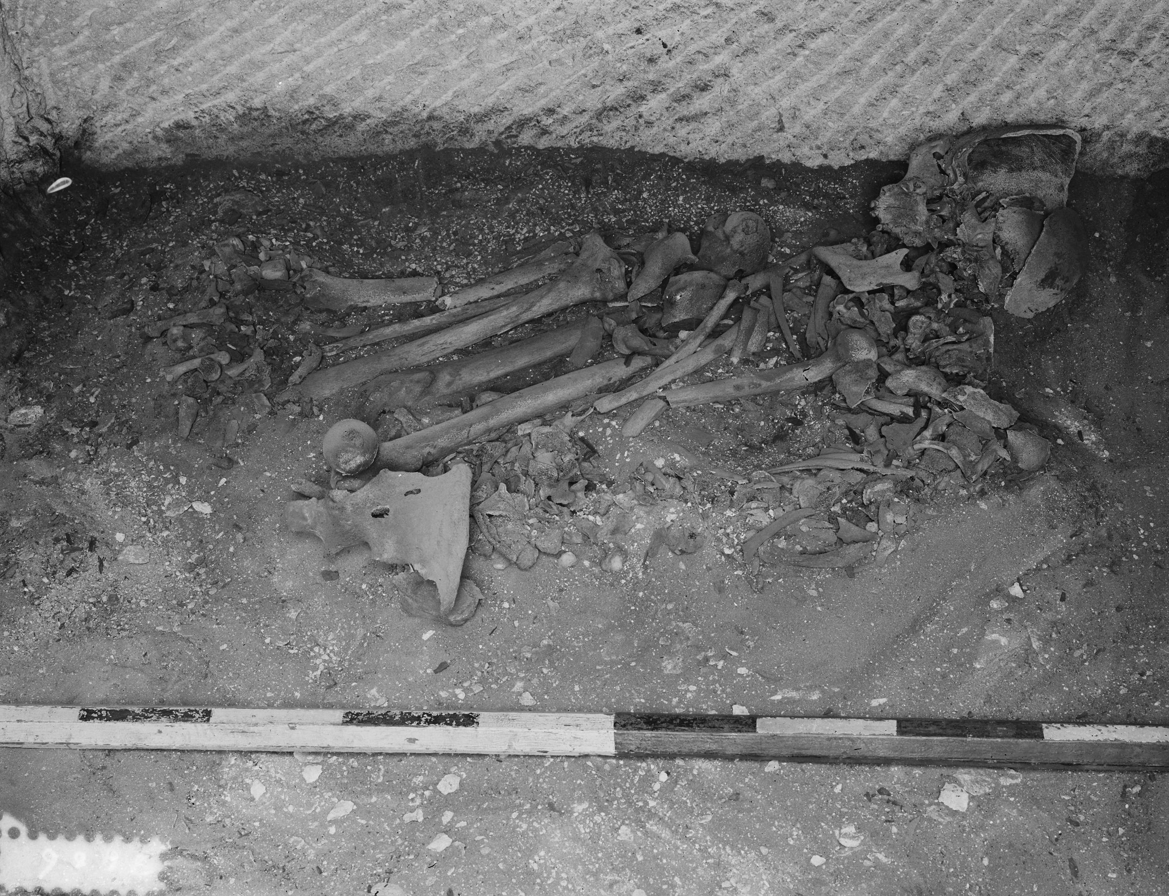 Western Cemetery: Site: Giza; View: G 24