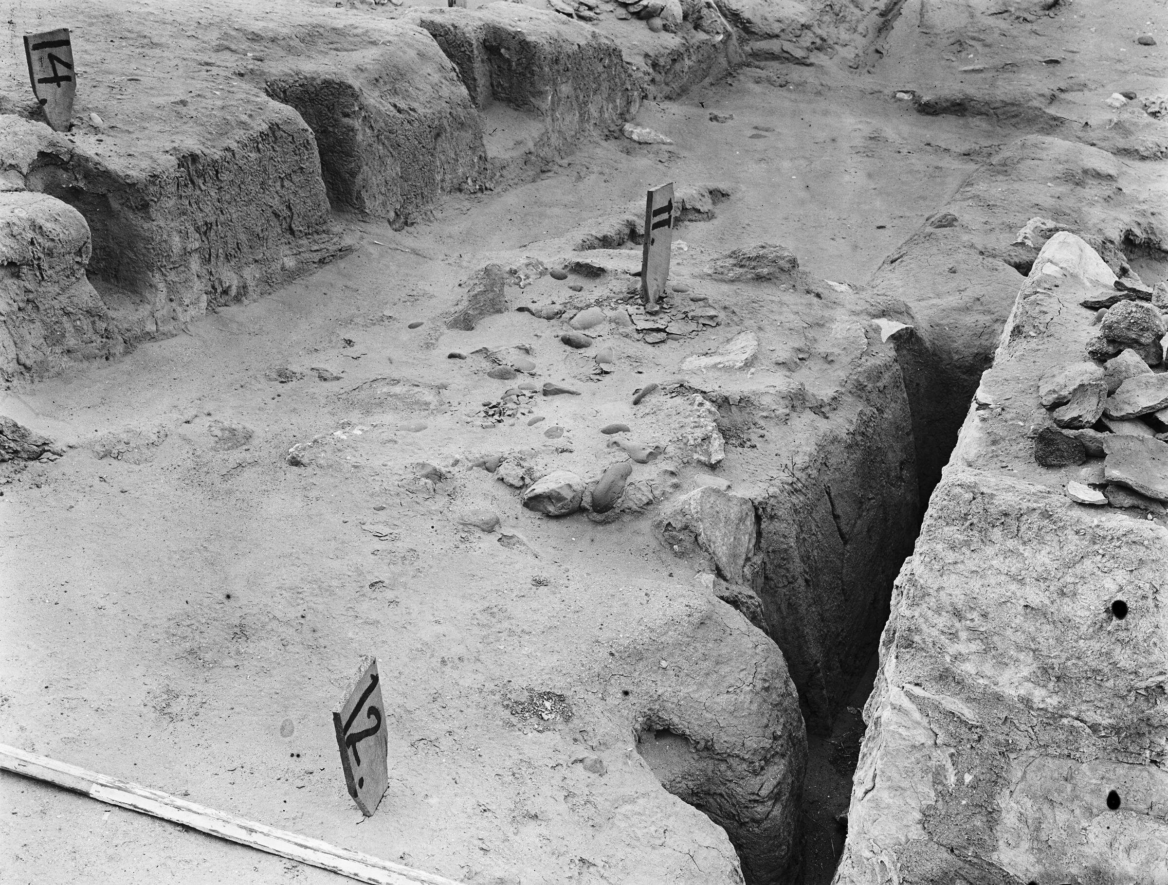 Wadi Cemetery (Reisner; north of W. Cem): Site: Giza; View: GW 7, GW 10, GW 11, GW 12, GW 14