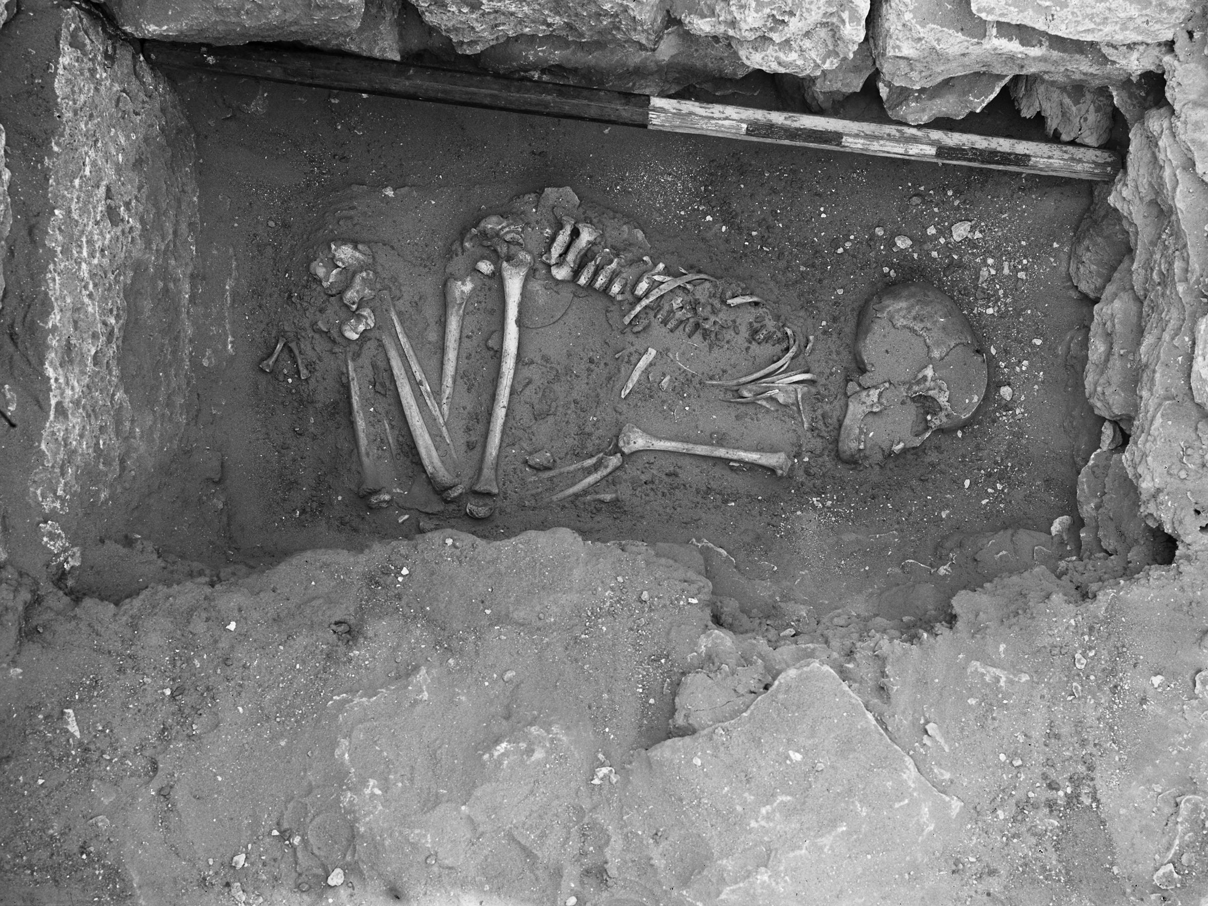 Western Cemetery: Site: Giza; View: G 1305