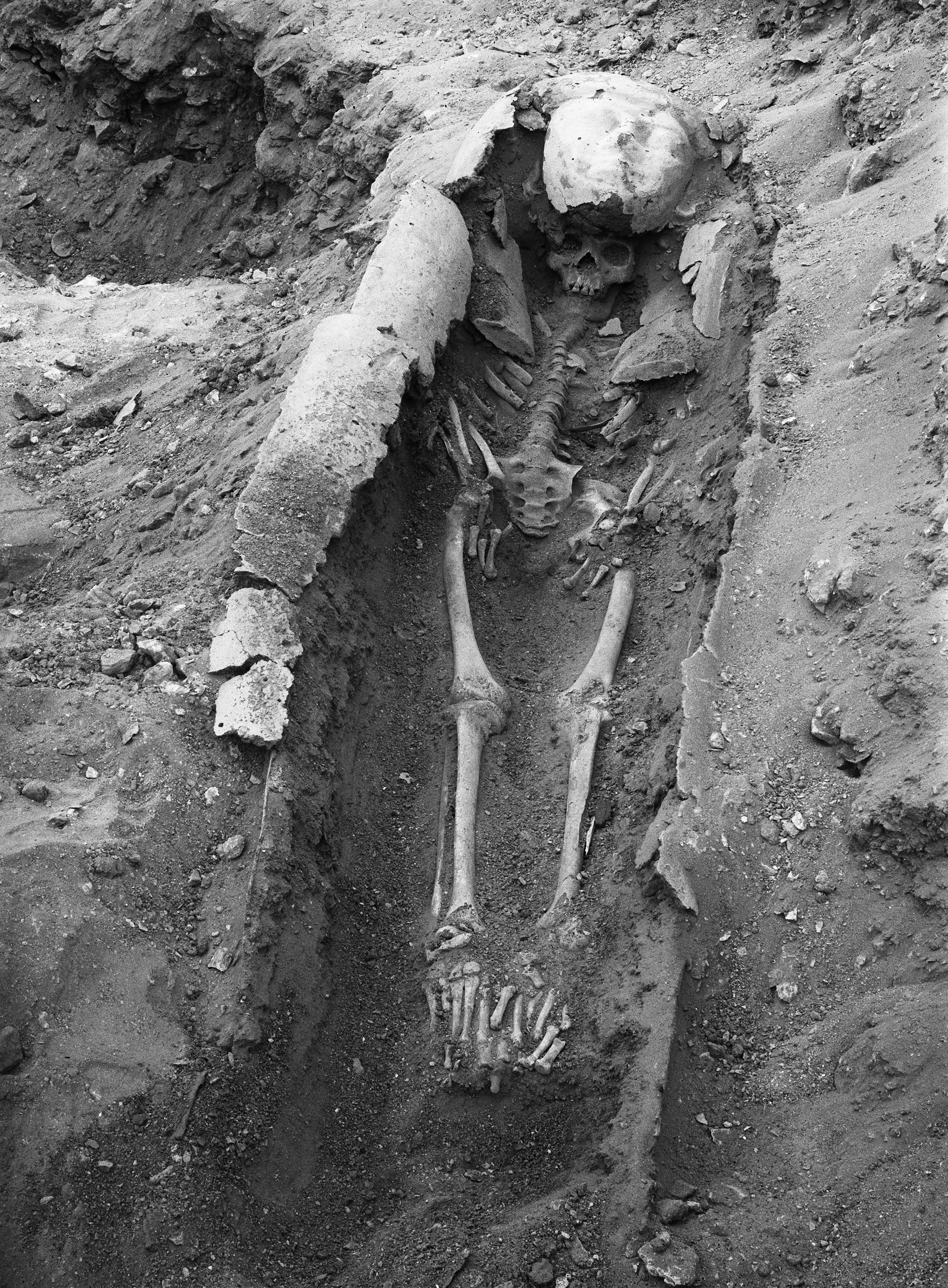 Western Cemetery: Site: Giza; View: G 7000 SE 125