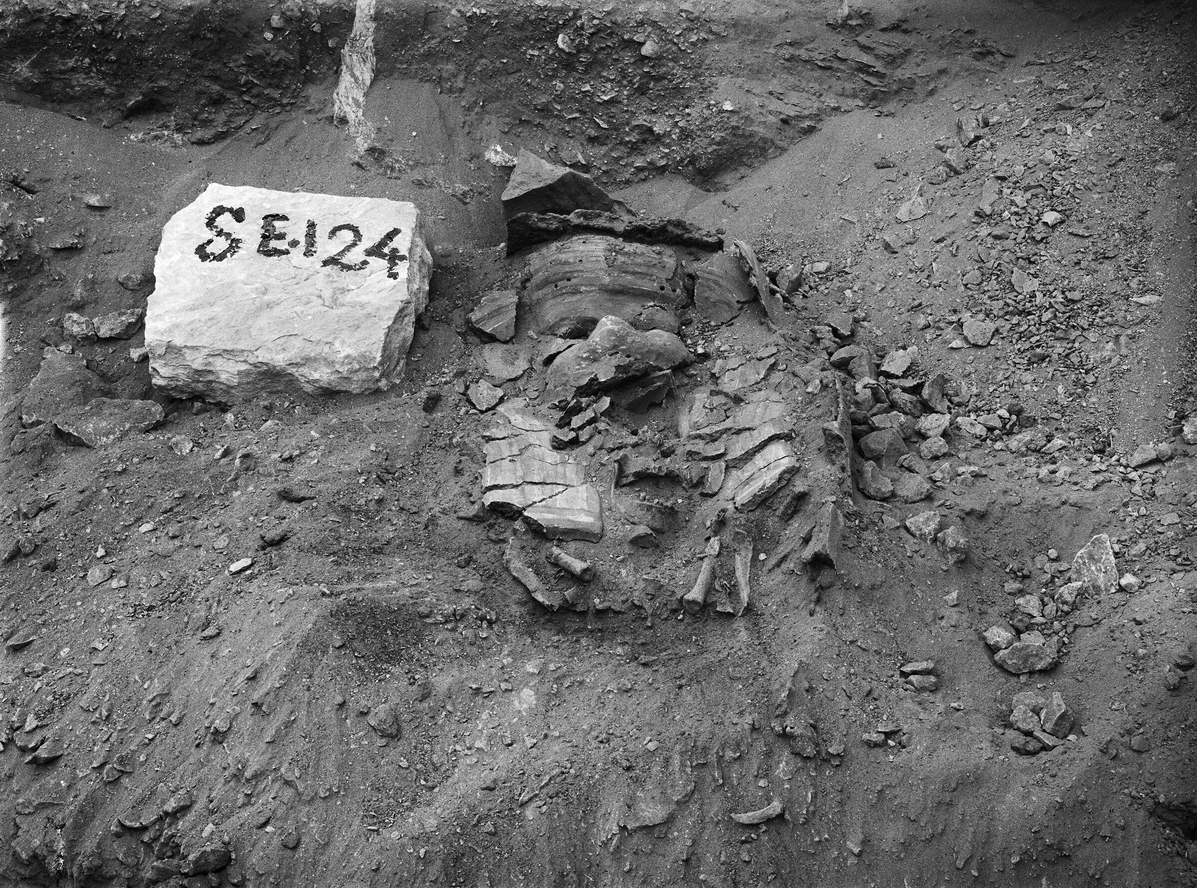 Western Cemetery: Site: Giza; View: G 7000 SE 124