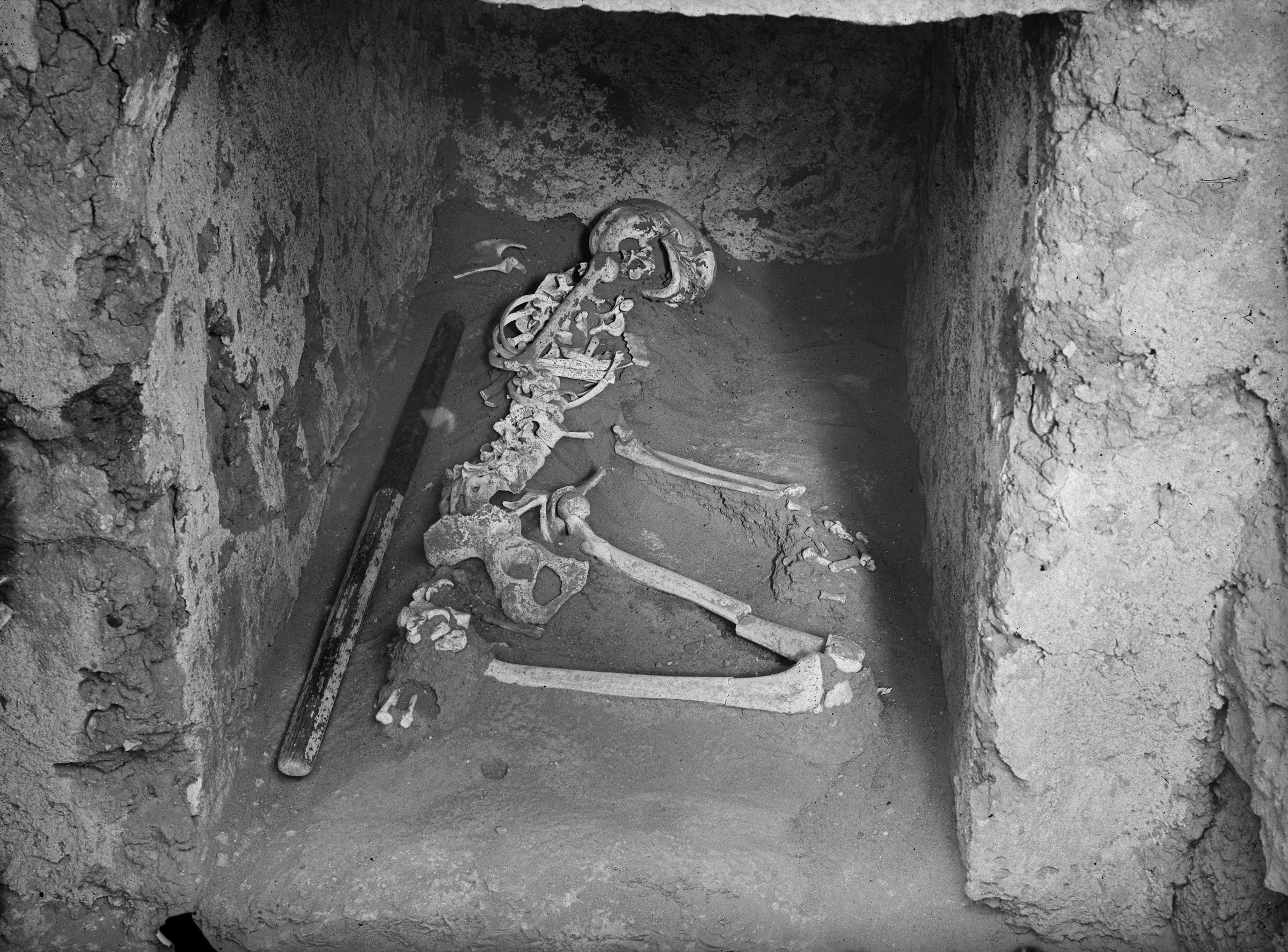 Western Cemetery: Site: Giza; View: G 1110