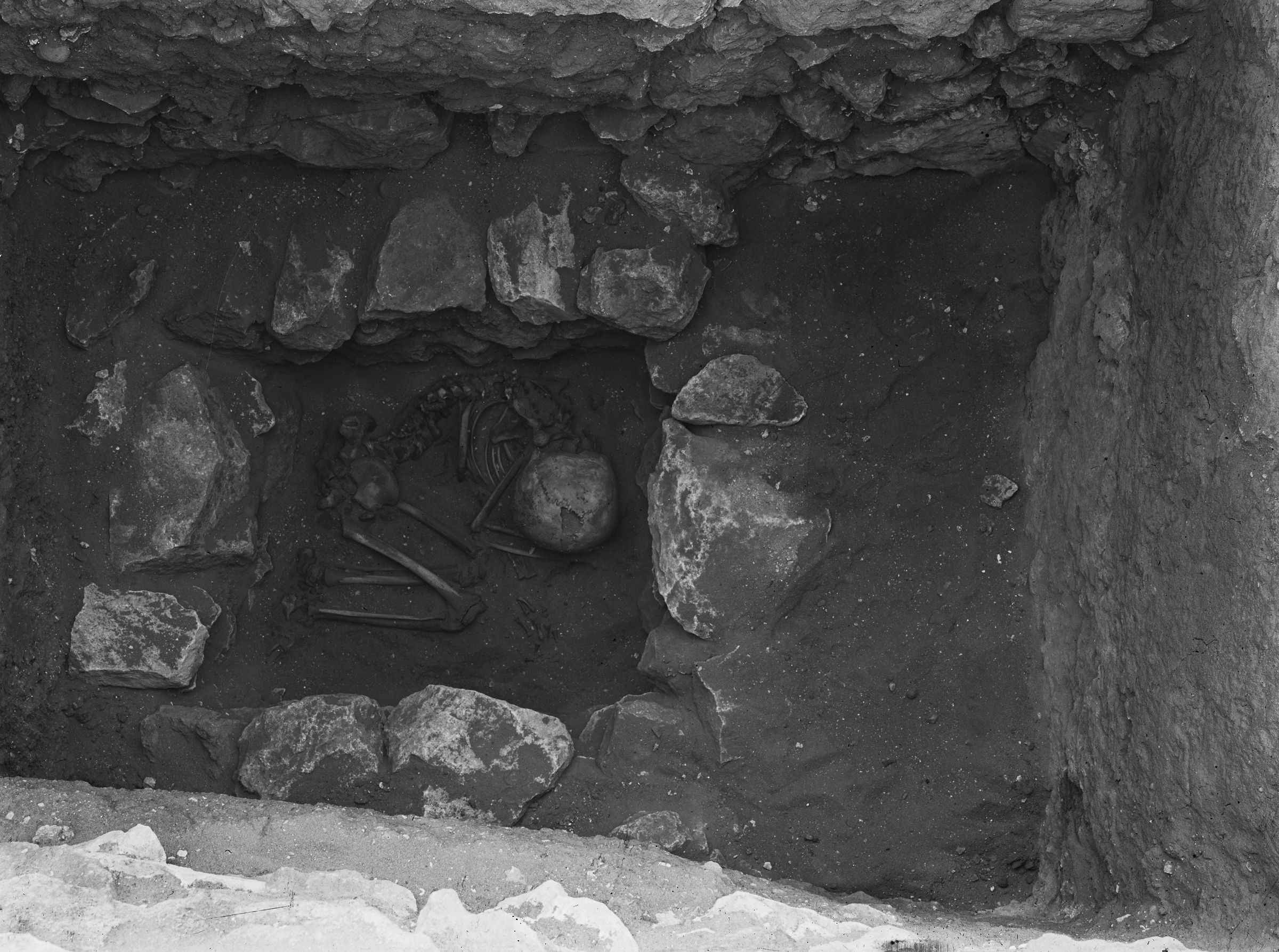 Western Cemetery: Site: Giza; View: G 1112+1113