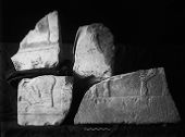Object(s) photograph: Site: Giza; view: G 7110-7120, G 7410-7420