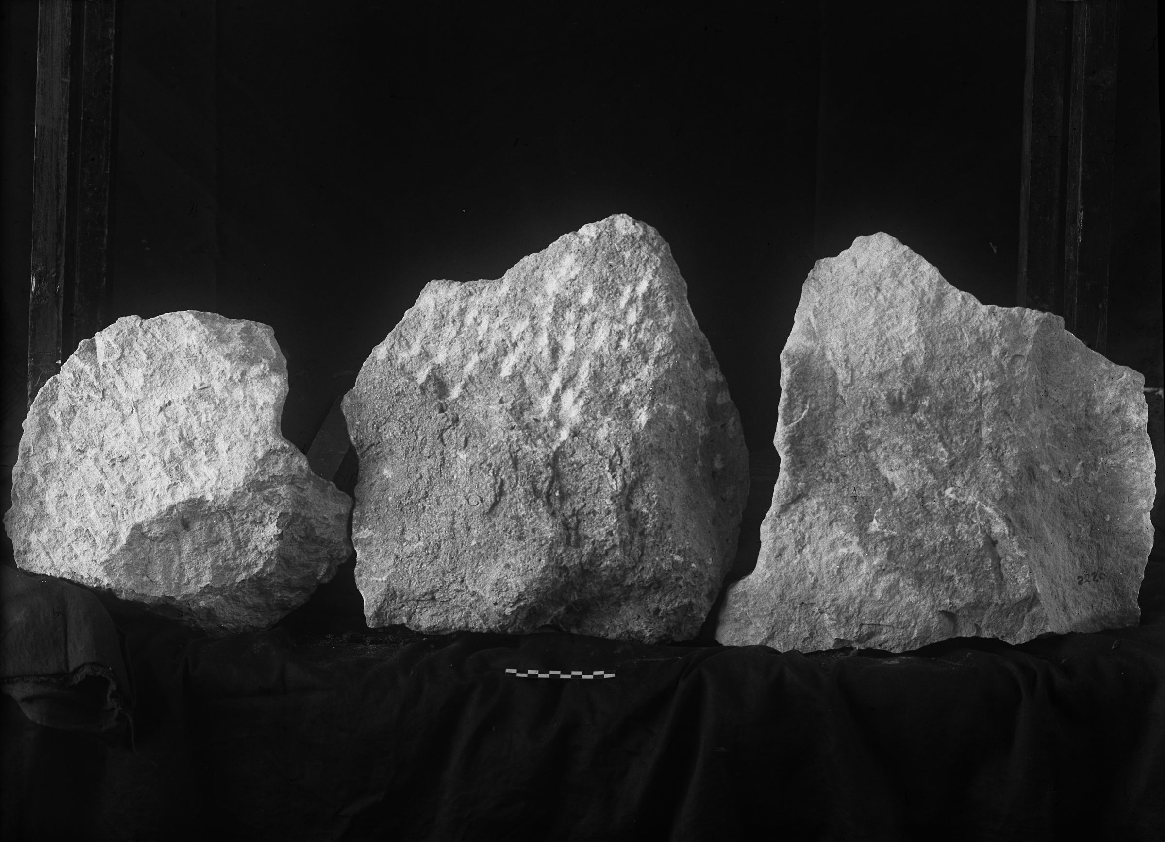 Object(s) photograph: Site: Giza; view: G 2220