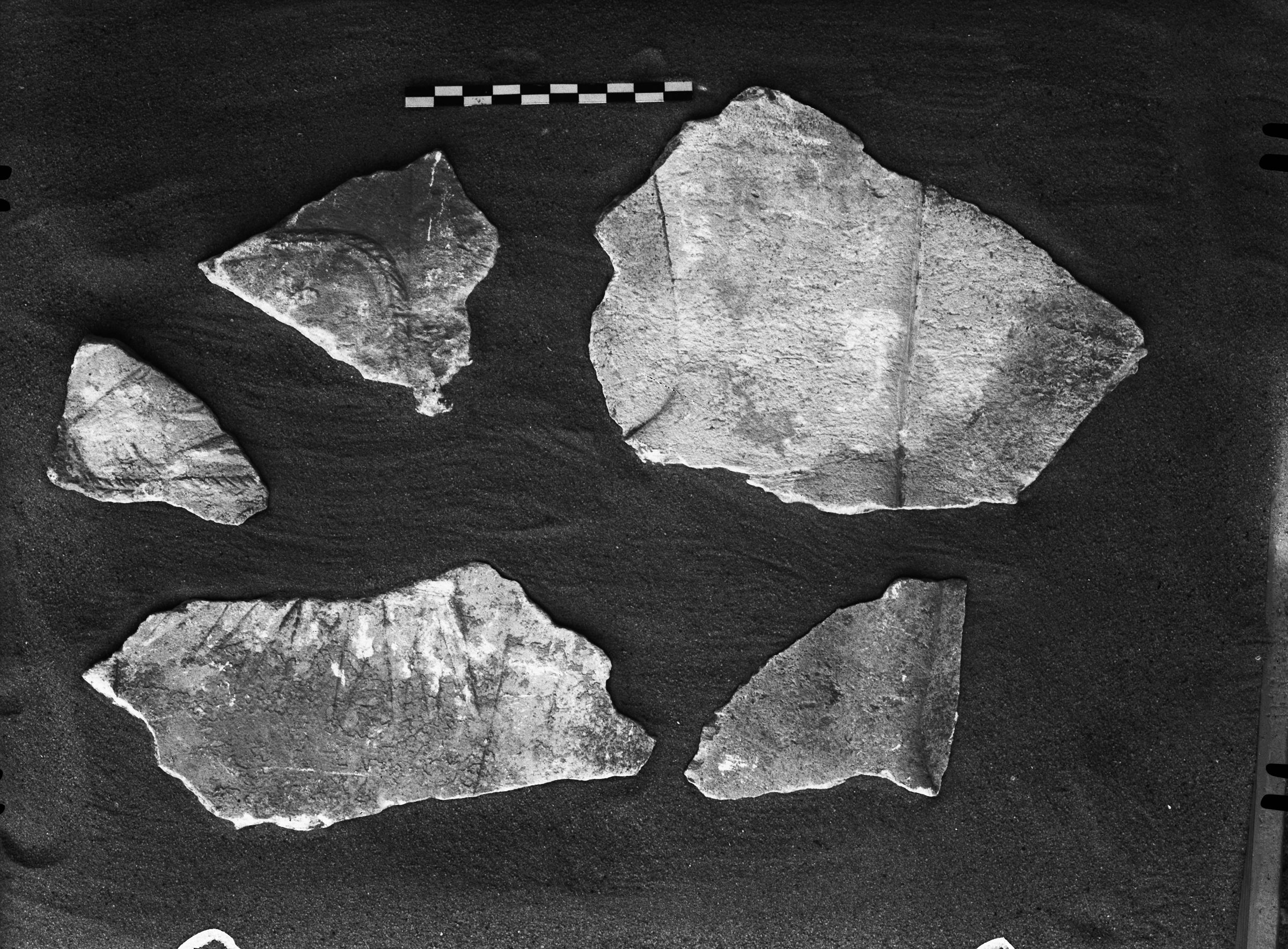 Object(s) photograph: Site: Giza; view: G 2230+2231