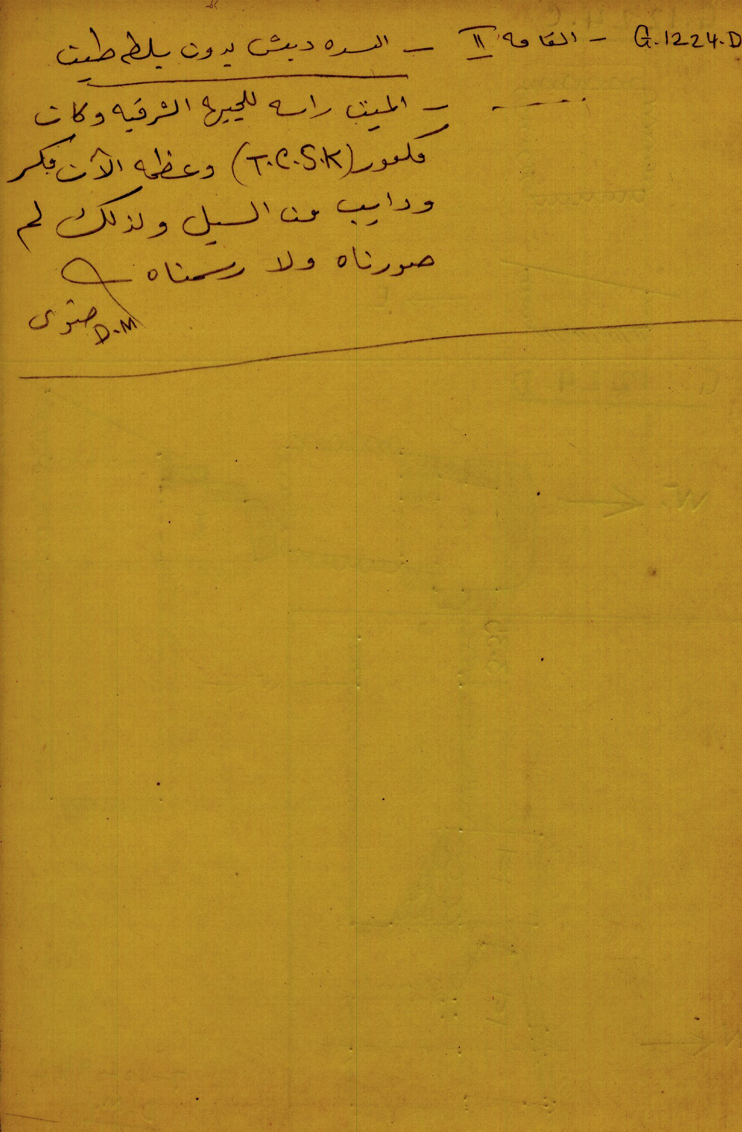 Notes: G 1224+1311: G 1224, Shaft D, notes (in Arabic)