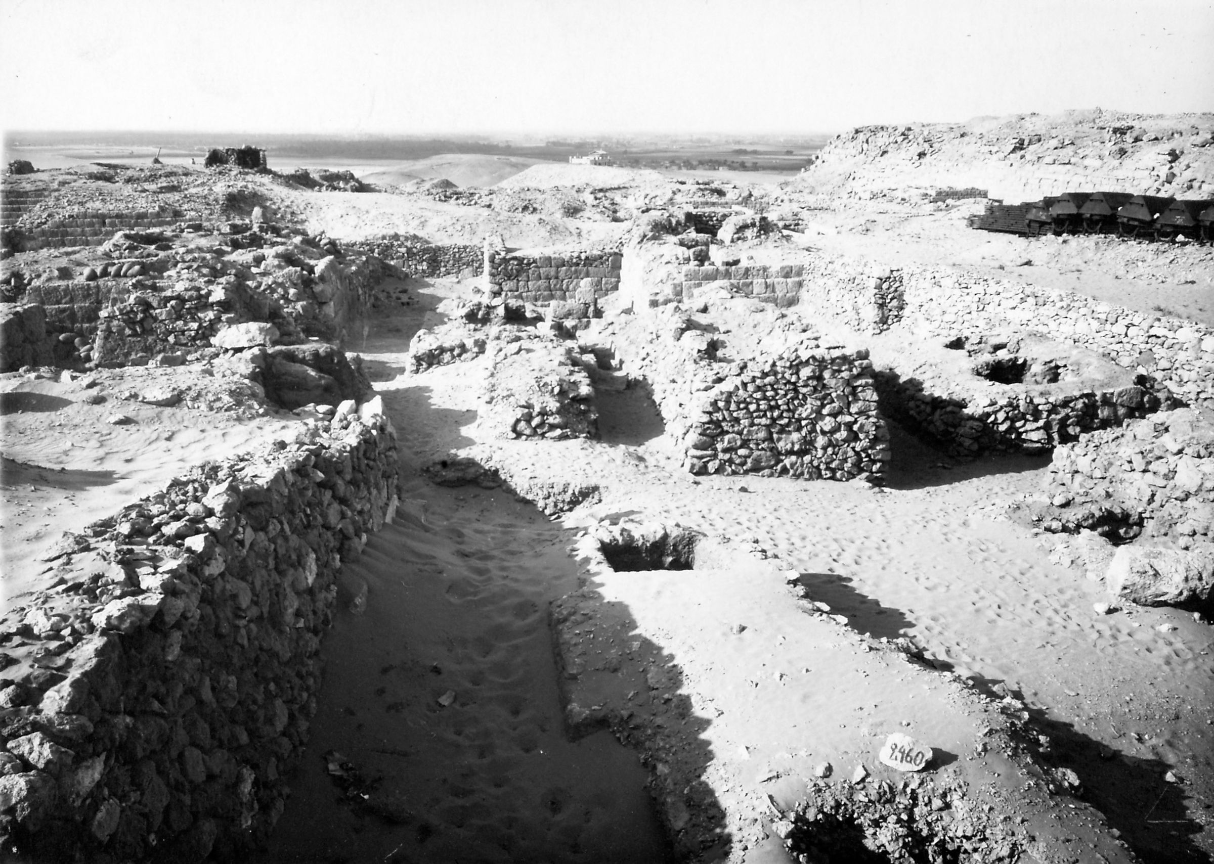 Western Cemetery: Site: Giza; View: S 2460
